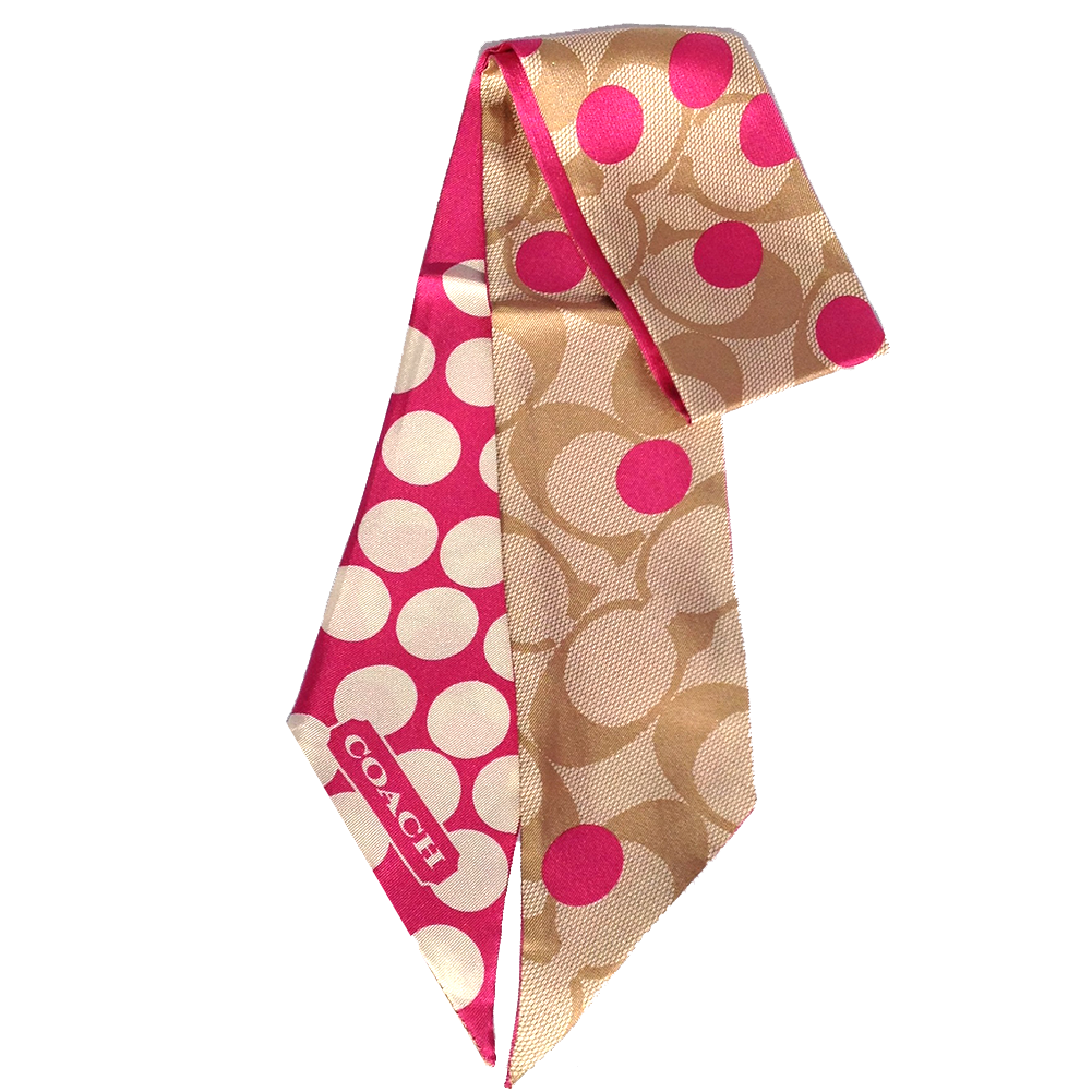 Picture Of Coach Park Signature Dot Ponytail Scarf