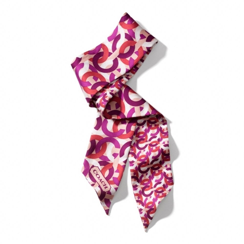 Picture of COACH Chain Link Print Ponytail Scarf