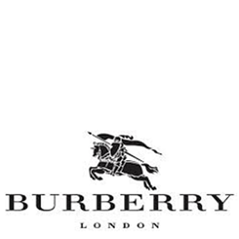 Picture for brand Burberry