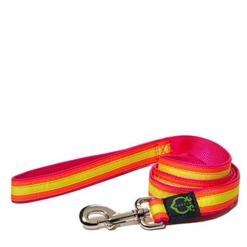 Picture of C. Wonder Neon Bright Stripes Dog Leash