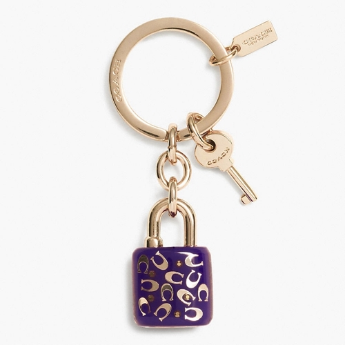 Picture of COACH Sprinkle C Lucite Lock Key Ring